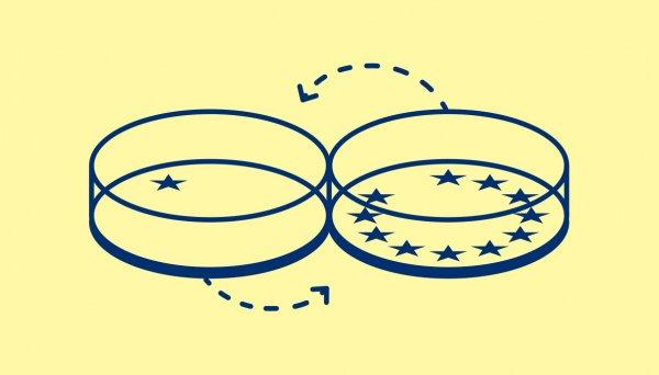 Illustration of eu flag in a petri dish
