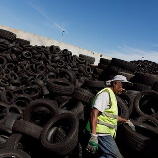 Man separating reusable tyres at a waste management site