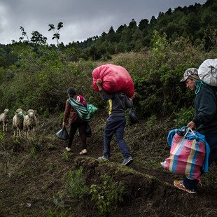 A family carries their belongings on their back as they go in search of work.