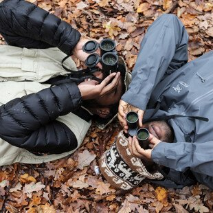 Birdwatchers lie on the ground to get a new perspective, looking upwards into the trees.