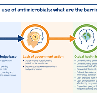 Graphic explaining what the barriers are to optimising use of antimicrobials.