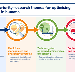 Graphic showing the priority research themes for optimising antimicrobials.