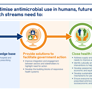 Graphic describing what future global research streams need to do to optimise antimicrobial use.
