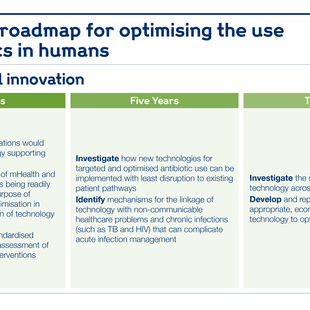 Research roadmap for medicines management and prescribing systems.