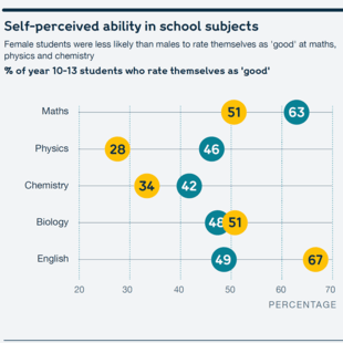 Chart showing students' self-perceived ability in school subjects