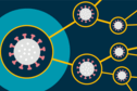 A large virus is on the left of the image on a light blue background, it connects out to the left, via orange lines, to other viruses with slight difference in shape.