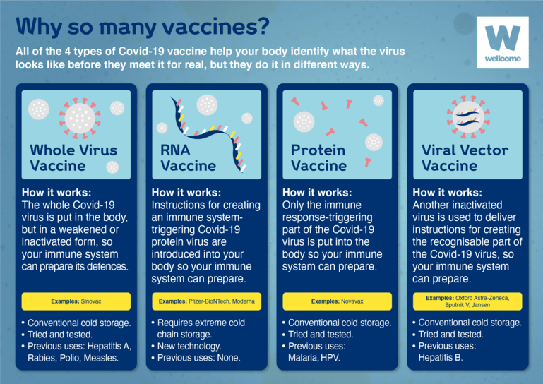 All four times of Covid-19 vaccine - whole virus vaccine, RNA vaccine, Protein vaccine and viral vector vaccine - help your body identify virus looks like before they meet it for real, but they do it in different ways.