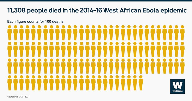 Figures representing the 11,308 people who died during the 2014-16 West African Ebola epidemic
