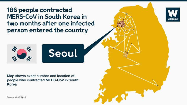 Chart to show how MERS-CoV spread through South Korea in two months.