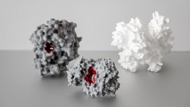 3D-printed structures of proteins
