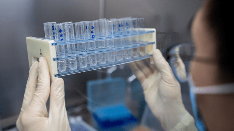 An engineer holds up a rack of experimental coronavirus vaccine candidates