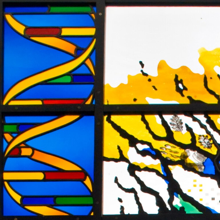Stained glass inspired by DNA