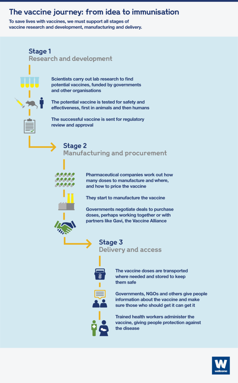 Infographic showing the three stages of the vaccine process - research and development, manufacturing and procurement, and delivery and access