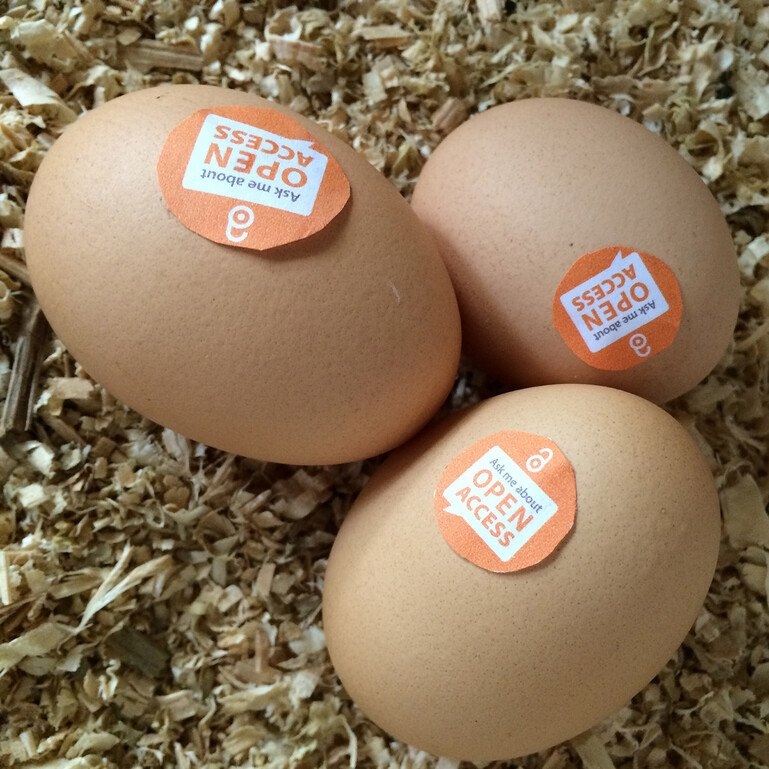 Eggs with 'ask me about open access' labels