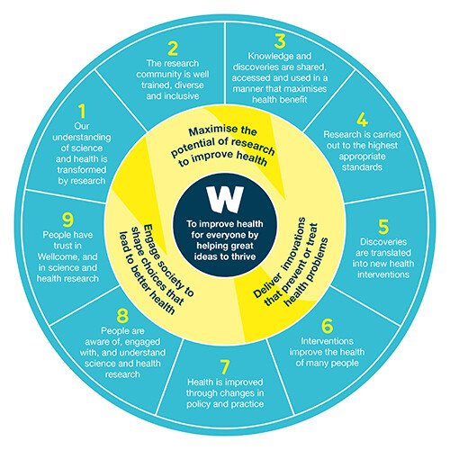 Chart showing Wellcome success framework