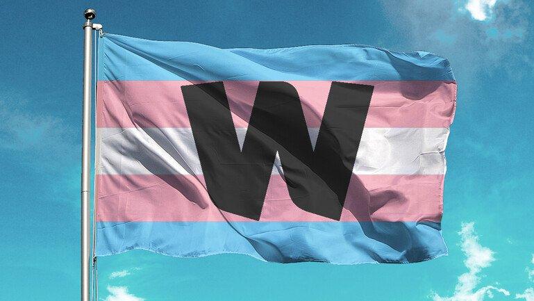 Transgender pride flag with Wellcome logo