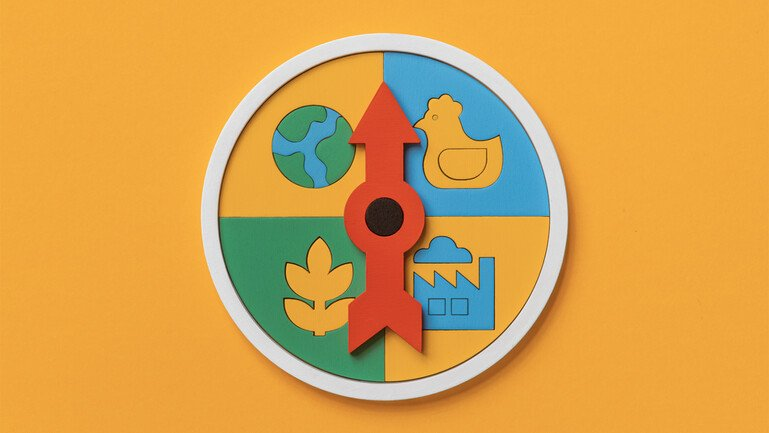 Illustration of an arrow in a circle with four quadrants, each filled icons of: a building, a bird, a plant and the globe.